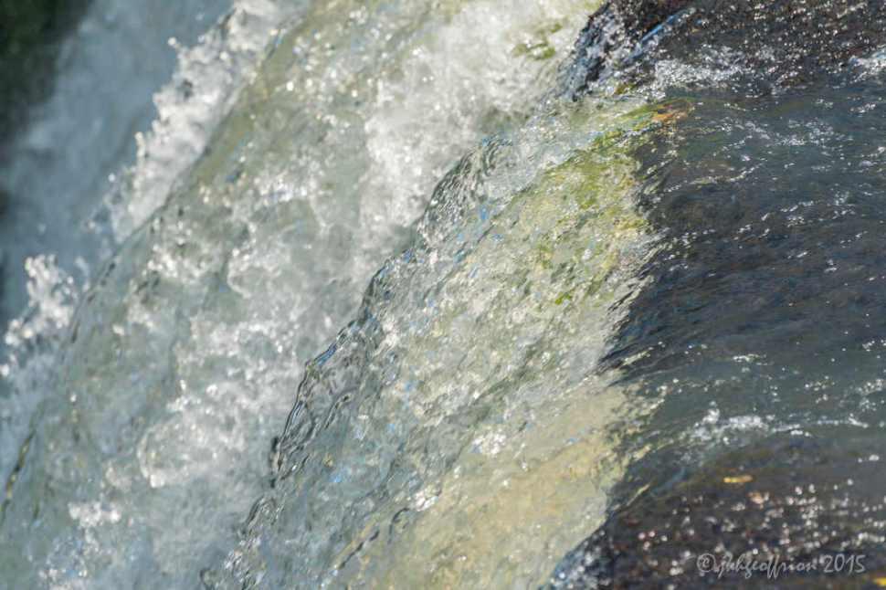 Photo ©Jill K H Geoffrion, Ph.D., www.jillgeoffrion.com