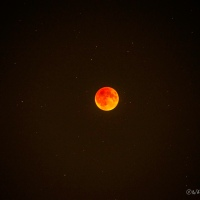 The Blood Moon Eclipse
