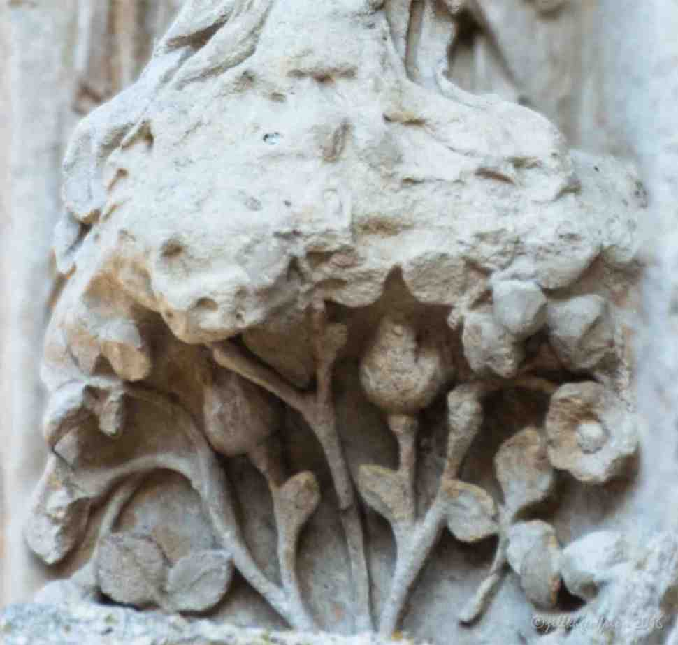 Beauty (?) on the North Porch by Jill K H Geoffrion
