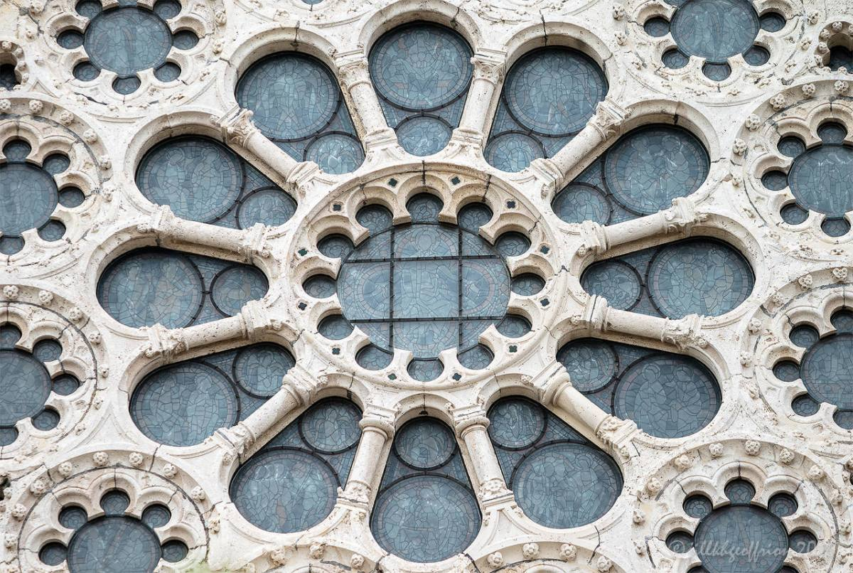 Angels: The West Rose Window At Chartes (6)