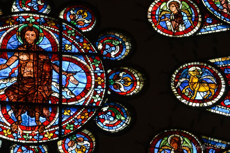Luke (Bull) in the West Rose at Chartres by Jill K H Geoffrion