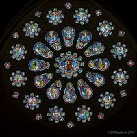 Stained Glass Flower: The West Rose Window At Chartes (1)