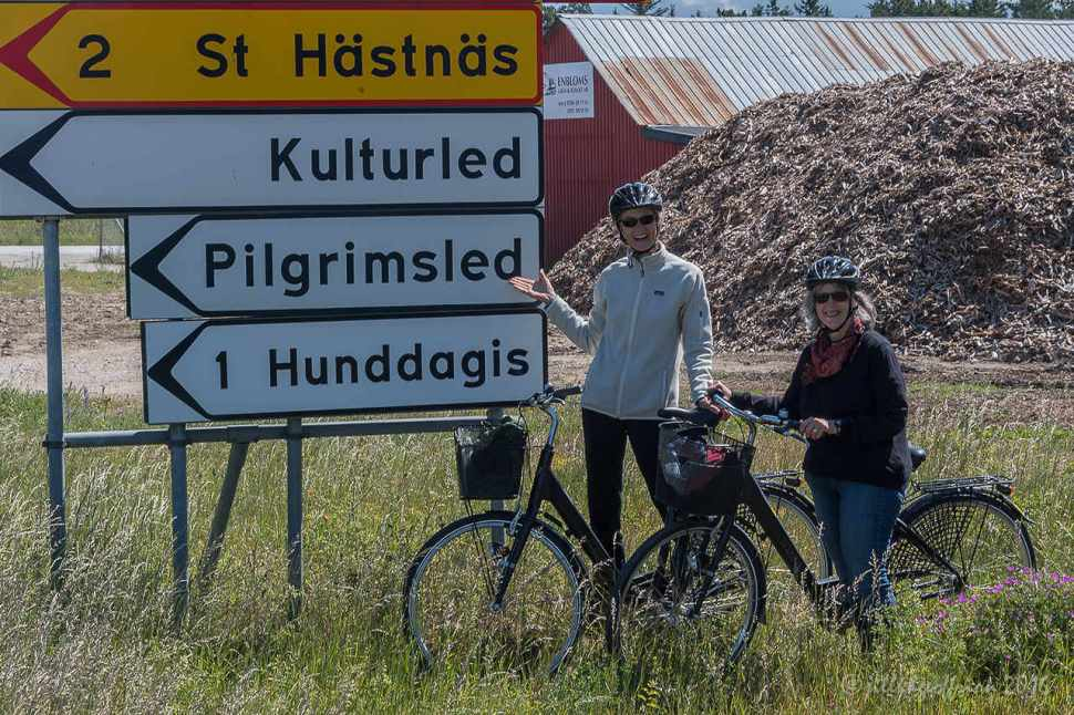 The Pilgrims' Way on Gotland by Jill K H Geoffrion