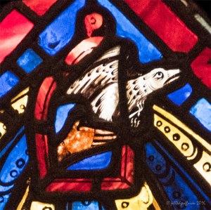 Noah releases a dove by Jill K H Geoffrion
